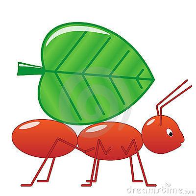 Cartoon Ant On The Leaf Stock Vector.