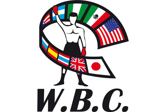 WBC Strips Miguel Cotto of Middleweight Title, Belt Still on Line.