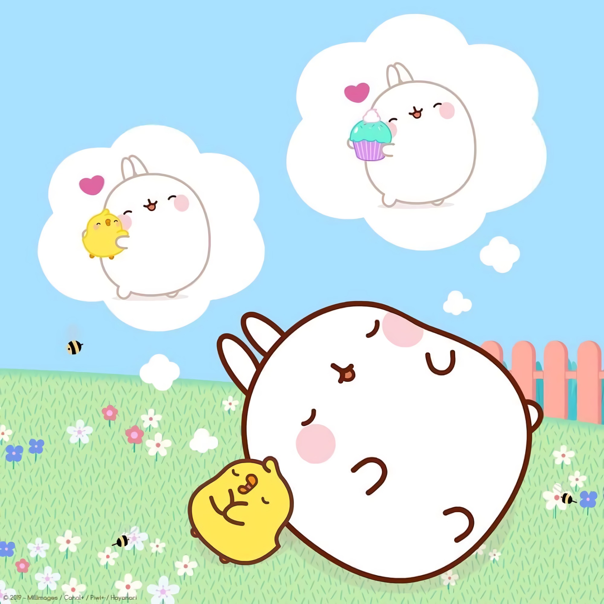 Happy World Dream Day! : molang.