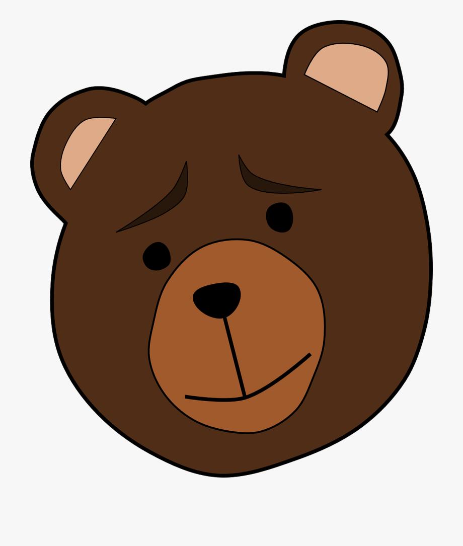 Animal, Bear, Face, Thinking, Worried, Mammal, Brown.