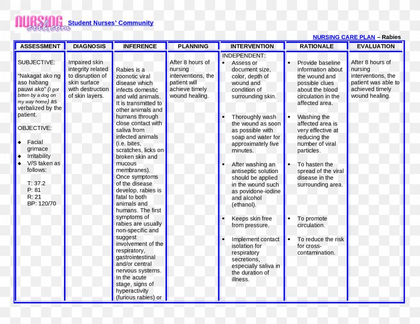Nursing Interventions Classification Nursing Care Plan.