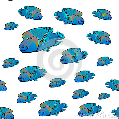 Wrasse Stock Illustrations.