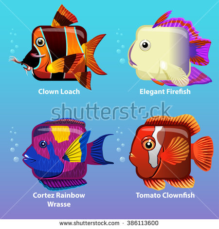 Wrasse Stock Vectors, Images & Vector Art.