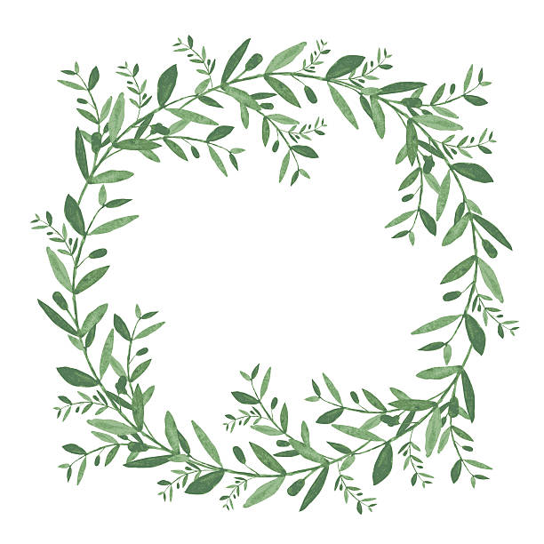 Best Olive Wreath Illustrations, Royalty.