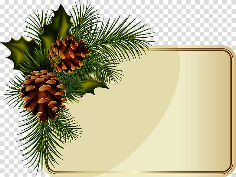 Wreath Christmas New Year , Pine cone border transparent.