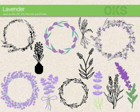 Lavender svg download, lavender wreath clipart, flower.