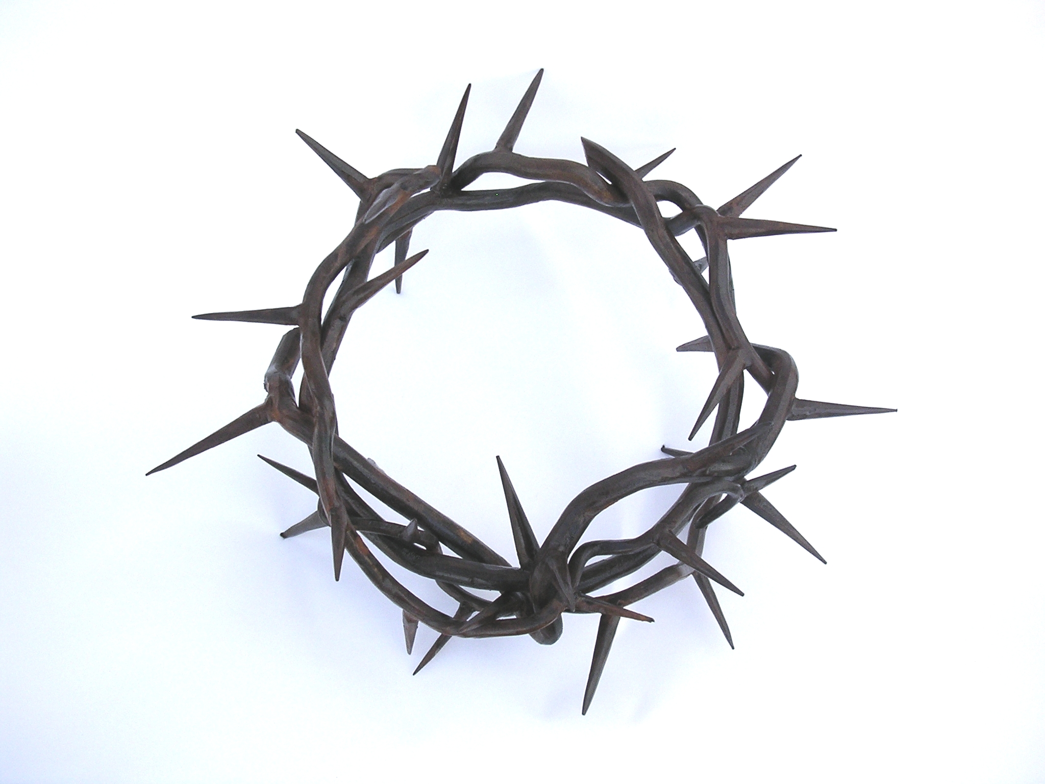 Quotes about Crown Of Thorns (71 quotes).