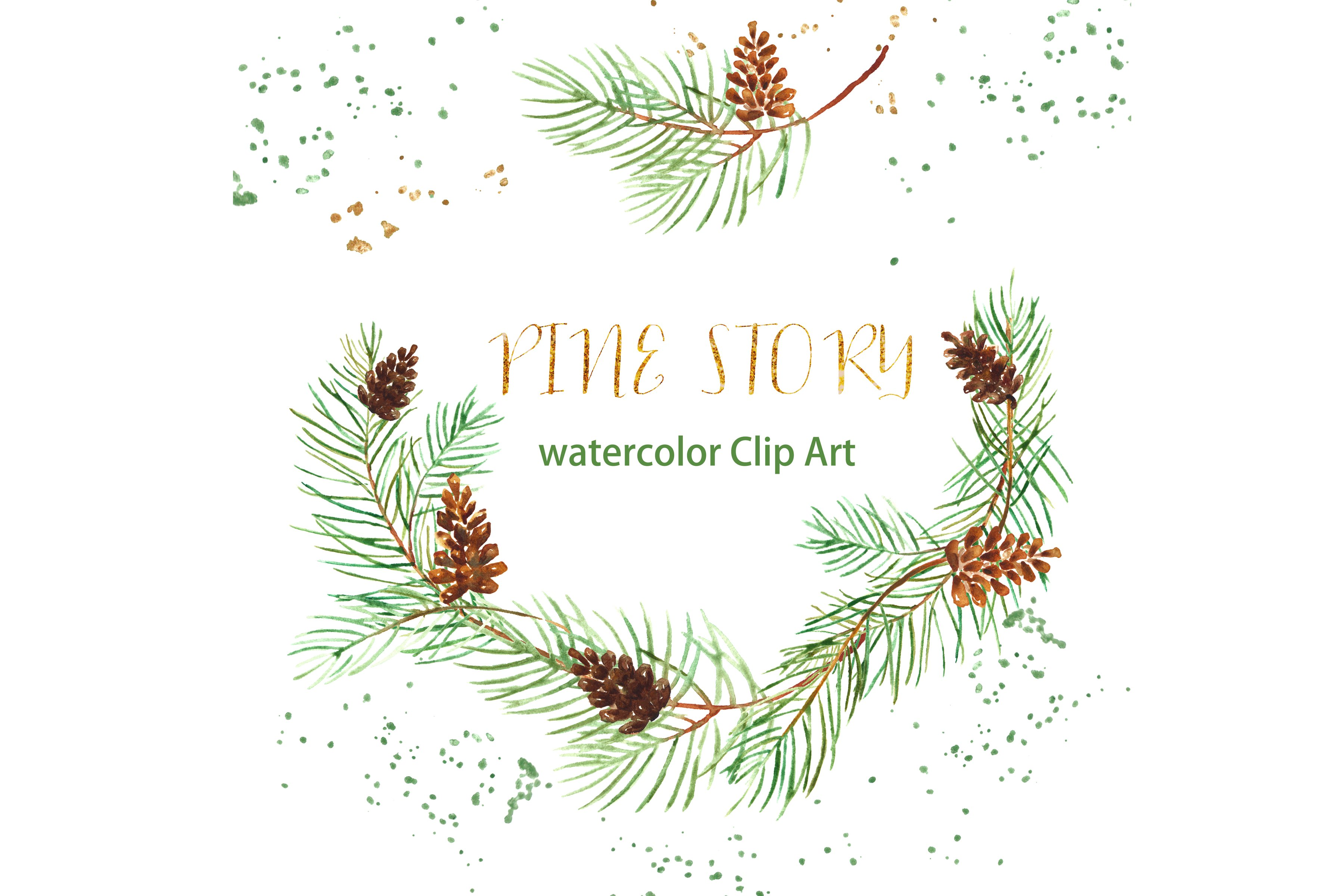Pine branches. Watercolor Clipart..