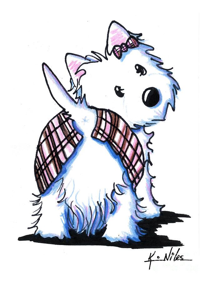 1000+ images about Westies on Pinterest.