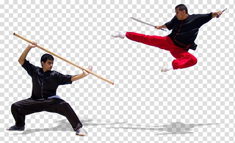 Chinese martial arts Wushu Taolu Sanshou, sanda transparent.