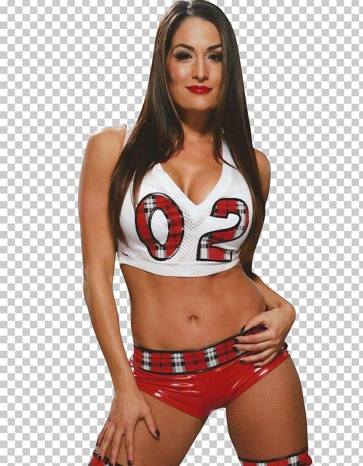 Nikki Bella WWE Divas Championship The Bella Twins Women In.