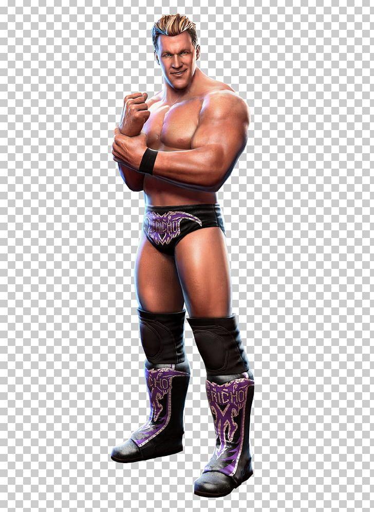 Chris Jericho WWE All Stars WWE Superstars Professional.