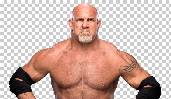 Bill Goldberg WWE Superstars World Heavyweight Championship.