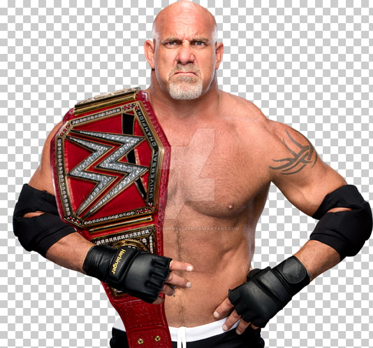 Bill Goldberg WWE Universal Championship World Heavyweight.