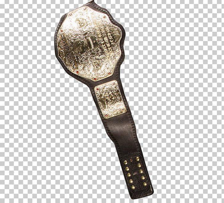ECW World Heavyweight Championship WWE Championship Professional.