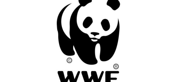 Download Free png WWF logo.