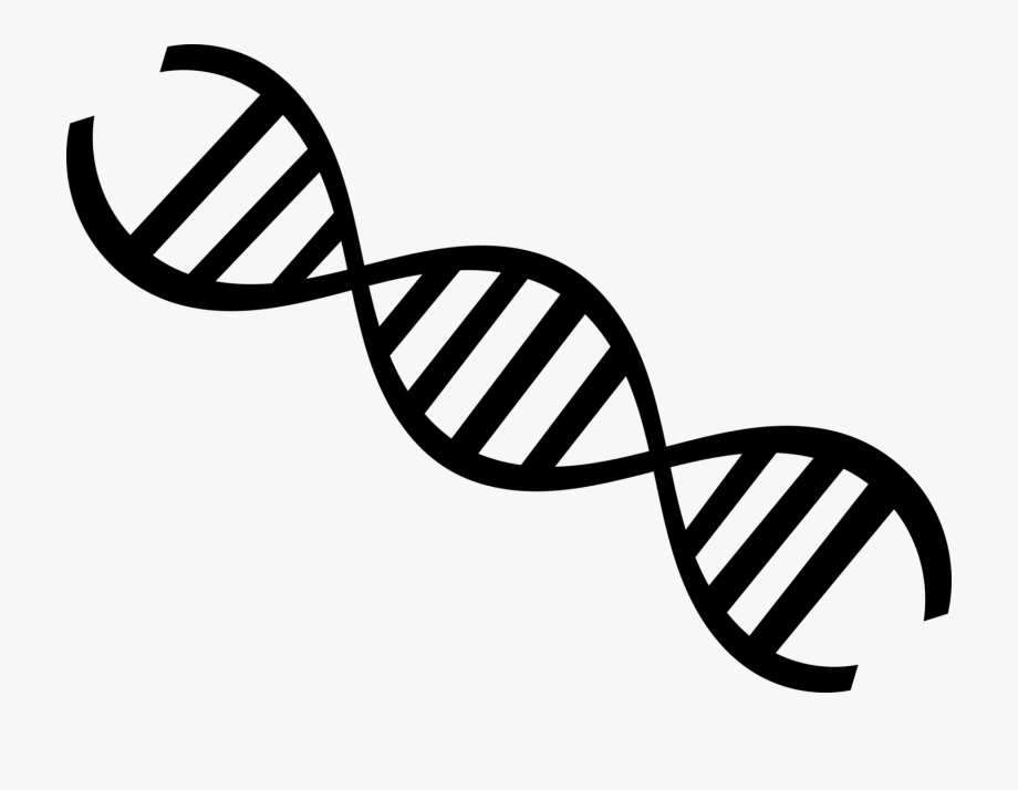 Dna Clipart Black And White.