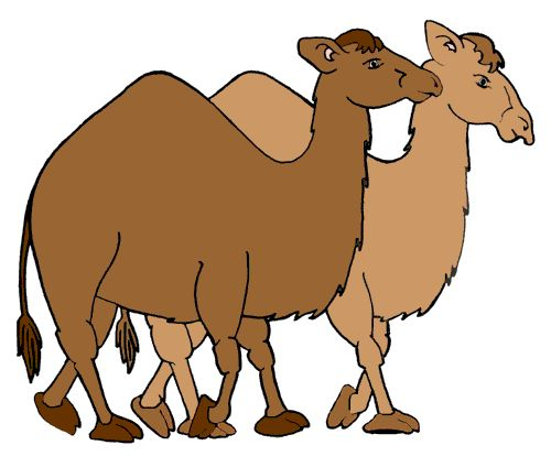 http://www.bing.com/images/search?q=clip art of camels.