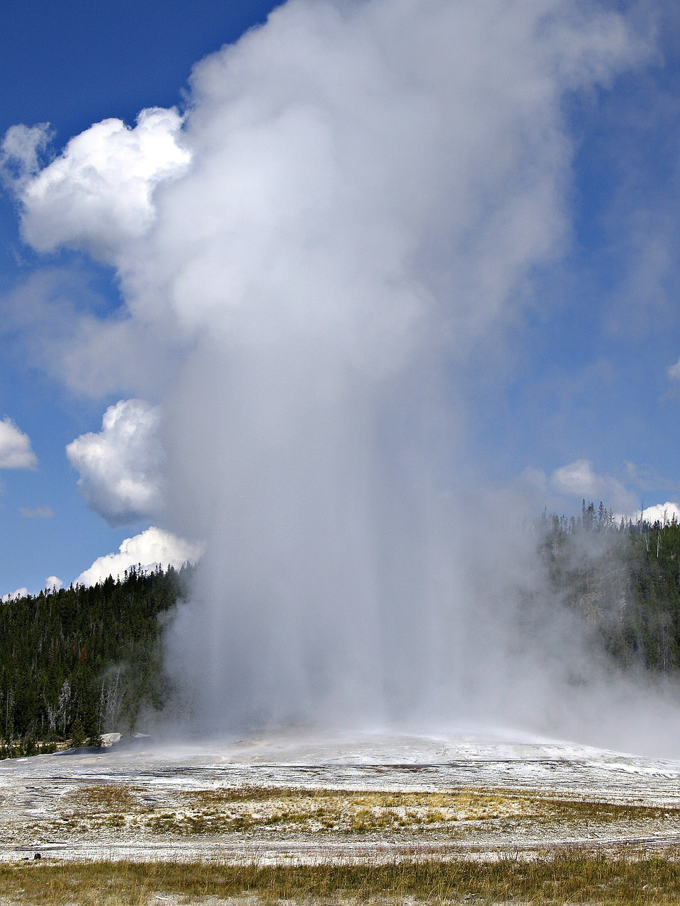 Old faithful,geyser,yellowstone national park,wyoming,usa.