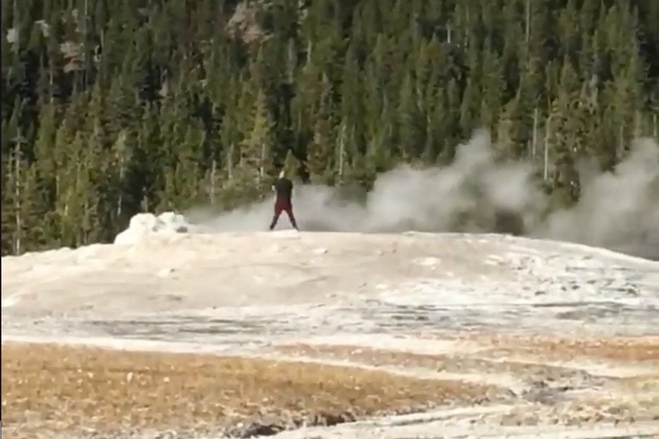 Get Off Old Faithful Now, Trespasser In Yellowstone National.