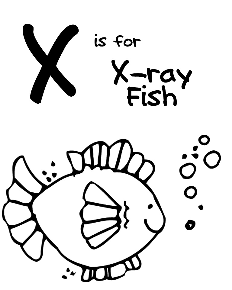 X Ray Clipart For Kids Images Pictures.