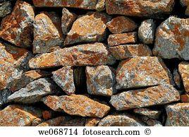 Parietina Stock Photo Images. 90 parietina royalty free images and.
