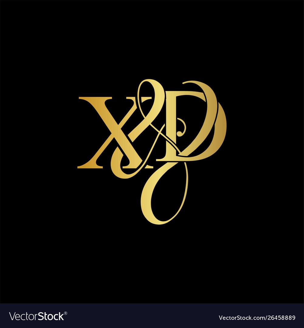 Xd x d logo initial mark.