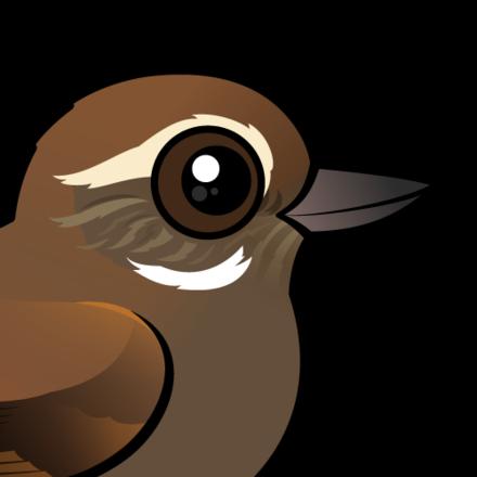 Cute Plain Xenops by Birdorable < Meet the Birds.