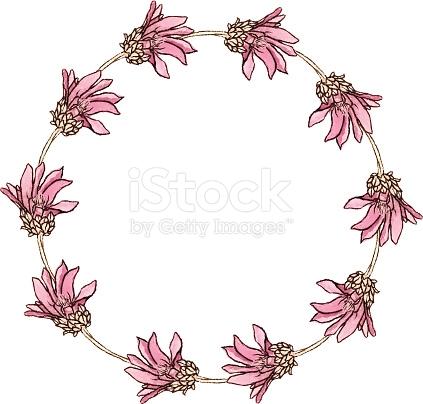 Xeranthemum Annuum Flower stock vector art 465448646.
