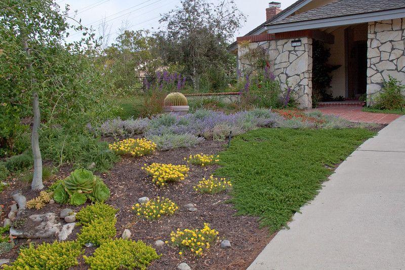 drought tolerant landscaping.