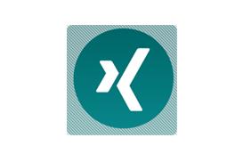 XING logo rules.