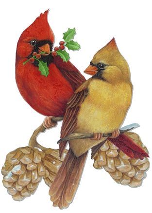 Free Cardinal Winter Cliparts, Download Free Clip Art, Free.