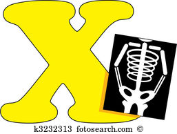 X ray Clip Art Illustrations. 3,637 x ray clipart EPS vector.