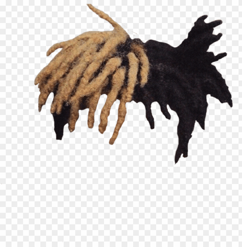 xxxtentacion hair PNG image with transparent background.