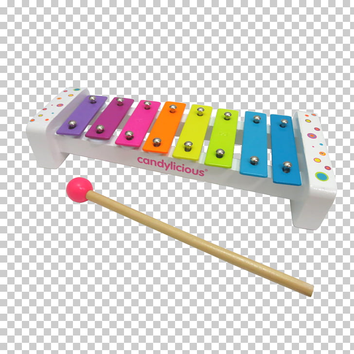 Musical Instruments Xylophone Metallophone Percussion.