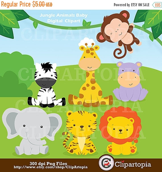 Jungle Animals Baby Digital Clipart / Safari Animals Clip art.