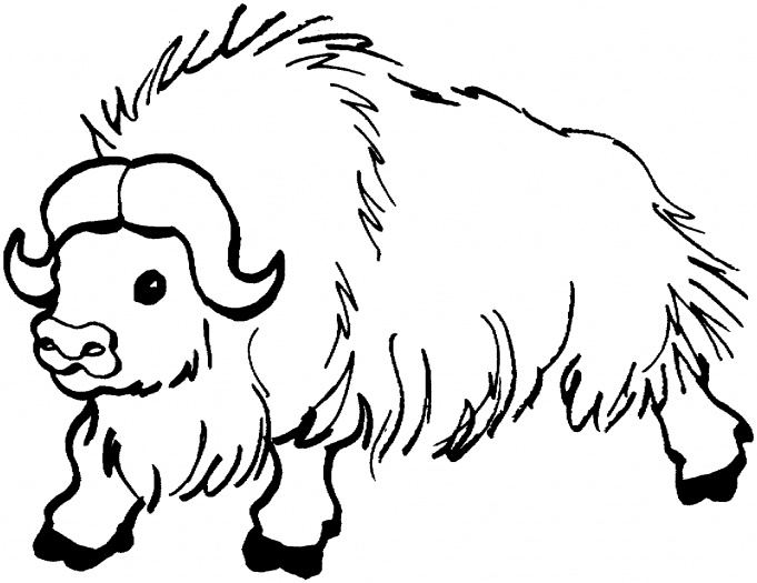 Free Yak Clipart Black And White, Download Free Clip Art.