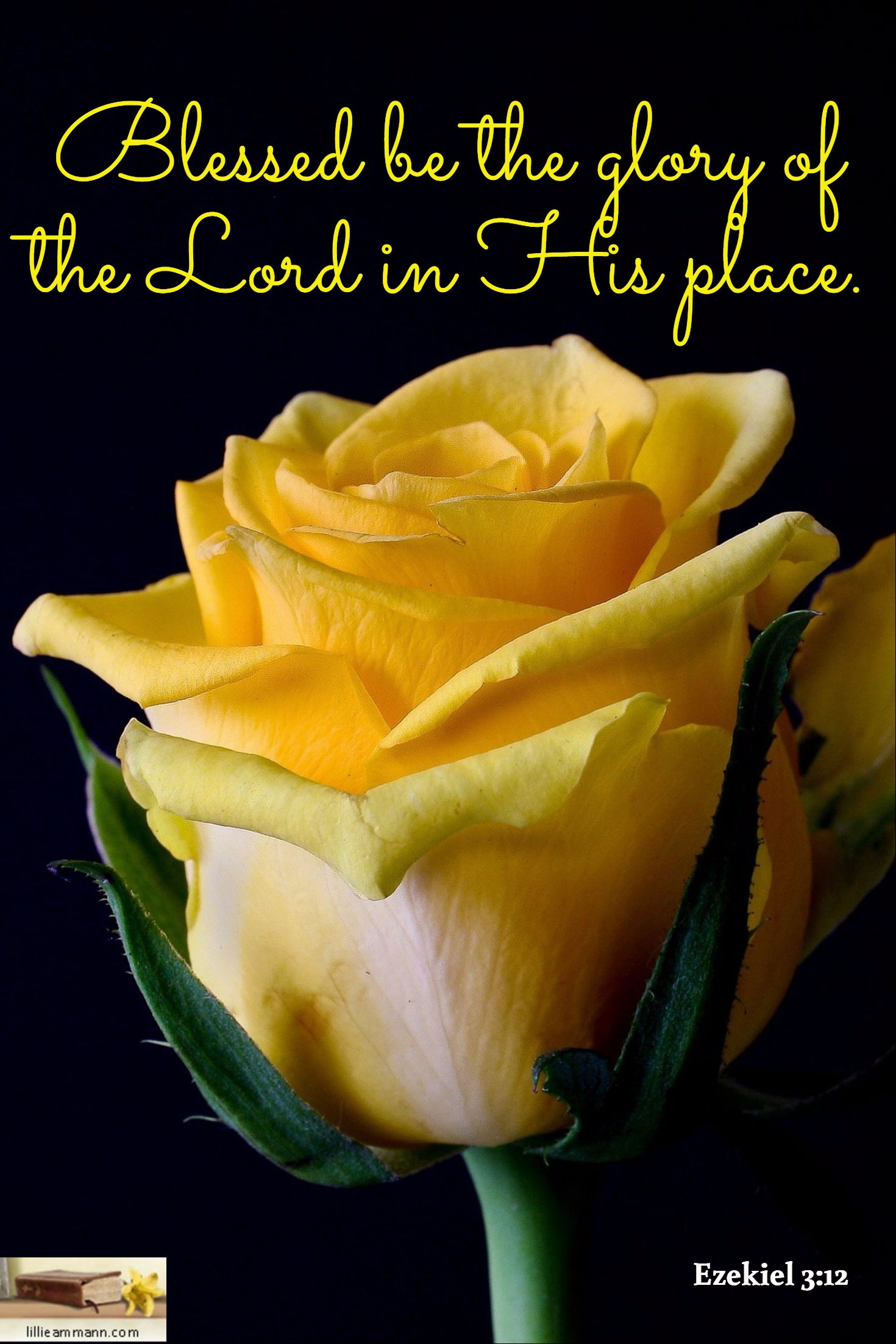 Ezekiel 3:12 / Blessed be the glory of the Lord in His place.