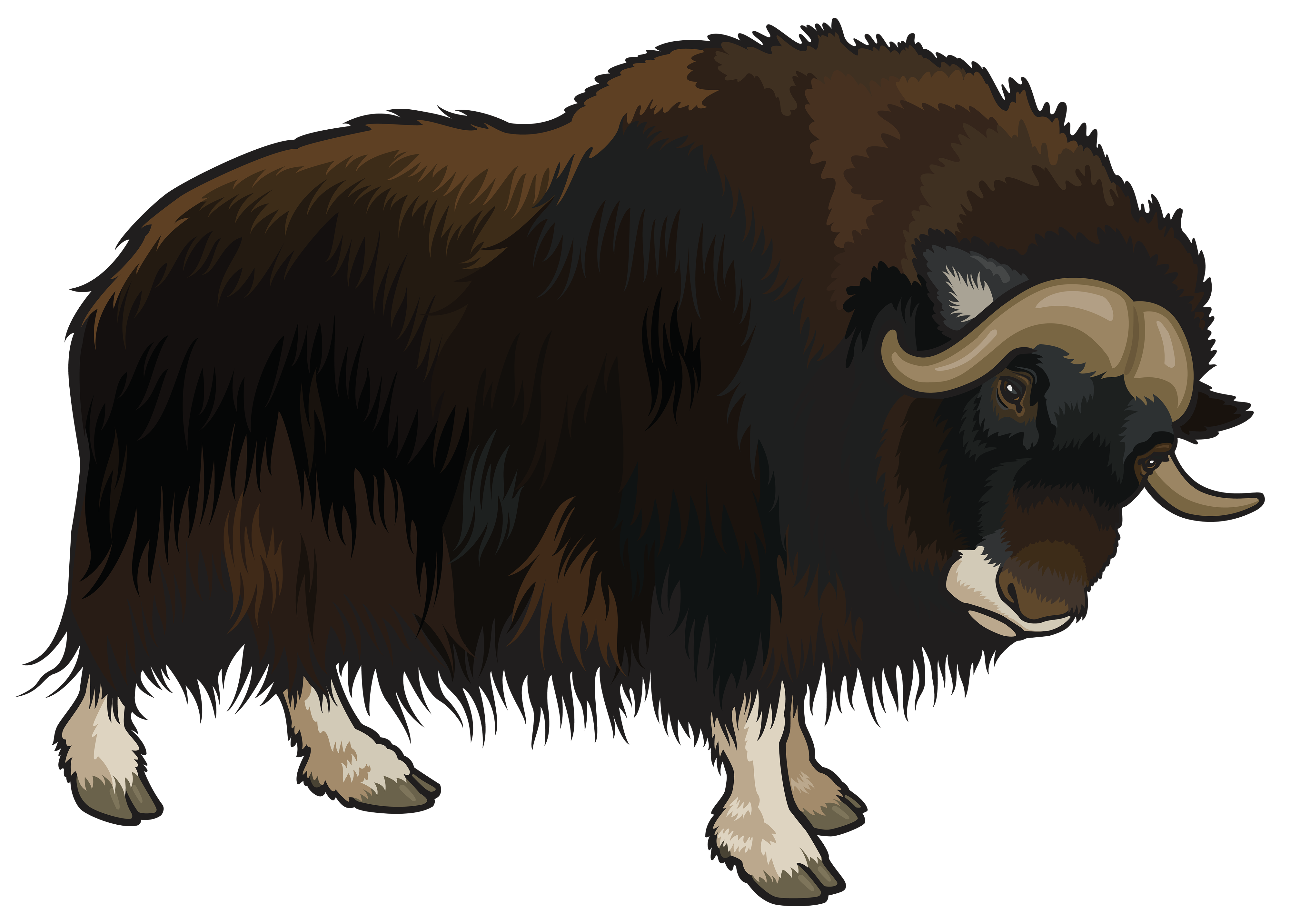 Yak Clipart Png.