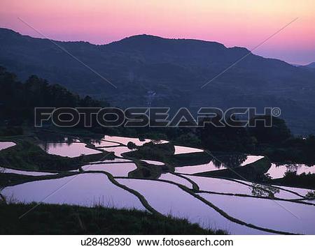 Stock Photography of Rice paddy fields, Nagato, Yamaguchi.