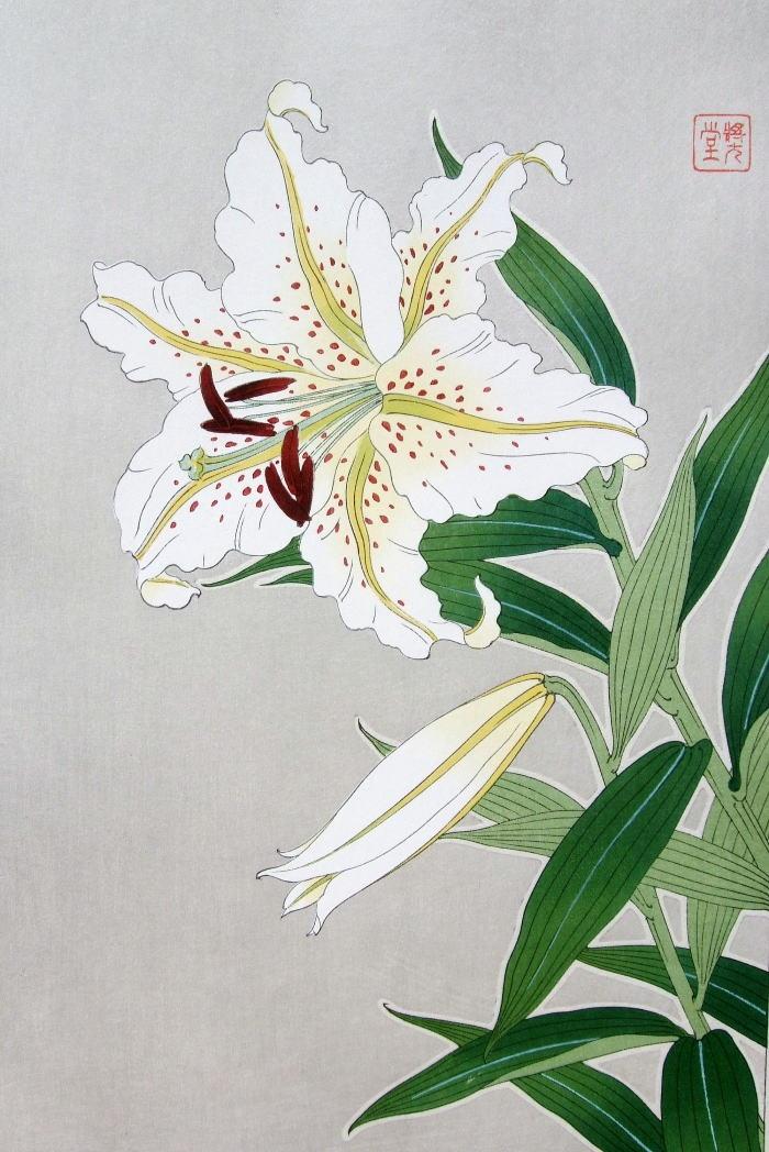 1000+ images about Floral Art or Illustration on Pinterest.