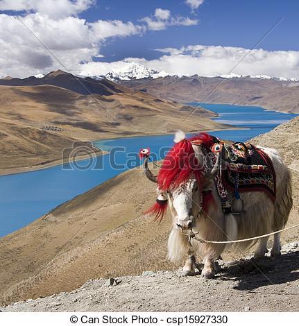 Stock Photos of Tibet.