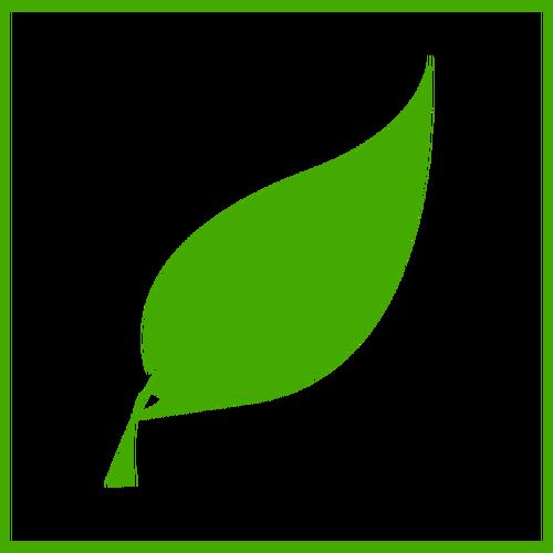 Eko yeşil yaprak vektör simgesi.