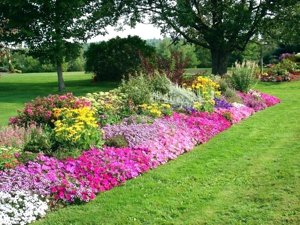 border gardens ideas.