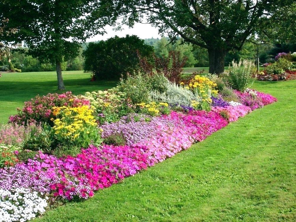 border gardens ideas.