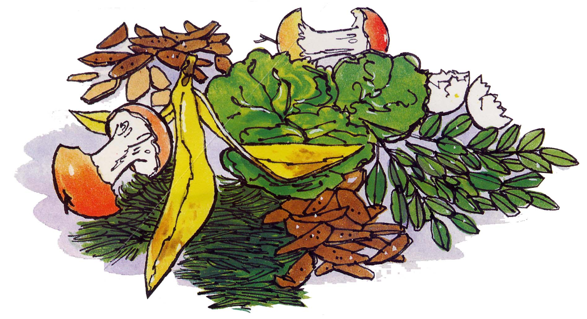 Vegetable Waste Clipart.