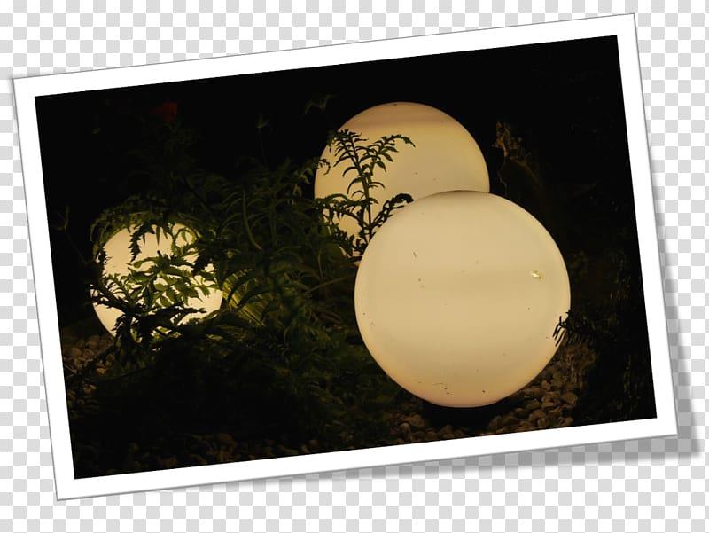 Landscape lighting Garden Gazebo House, Gardening Service.