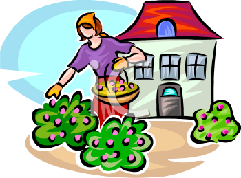 Yards clipart.