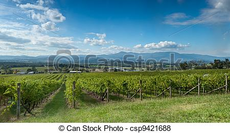 Pictures of View of the Yarra Valley, near Melbourne, Australia.