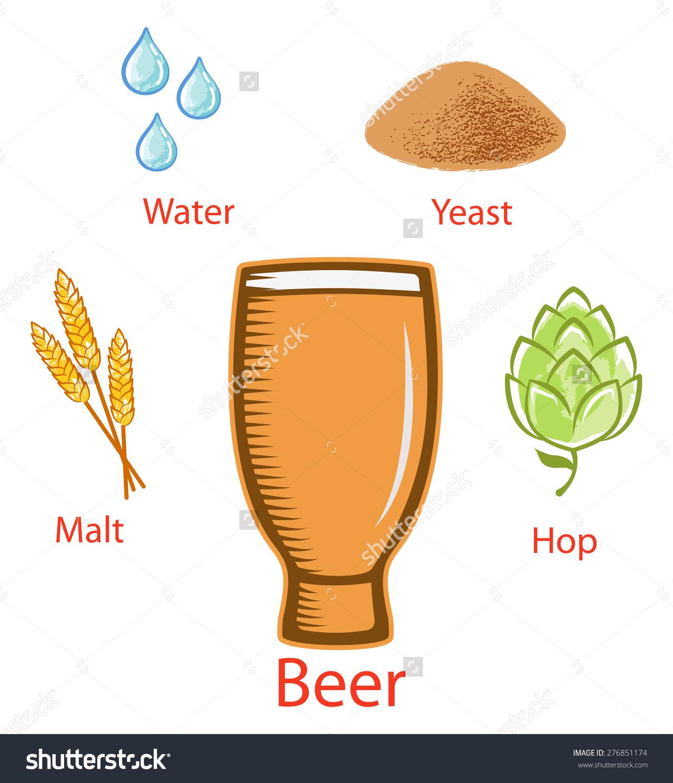 Beer Ingredients Malt Water Yeast Hop Stock Vector 276851174.